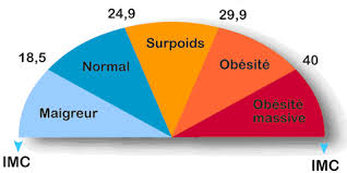 fitness perte de masse grasse
